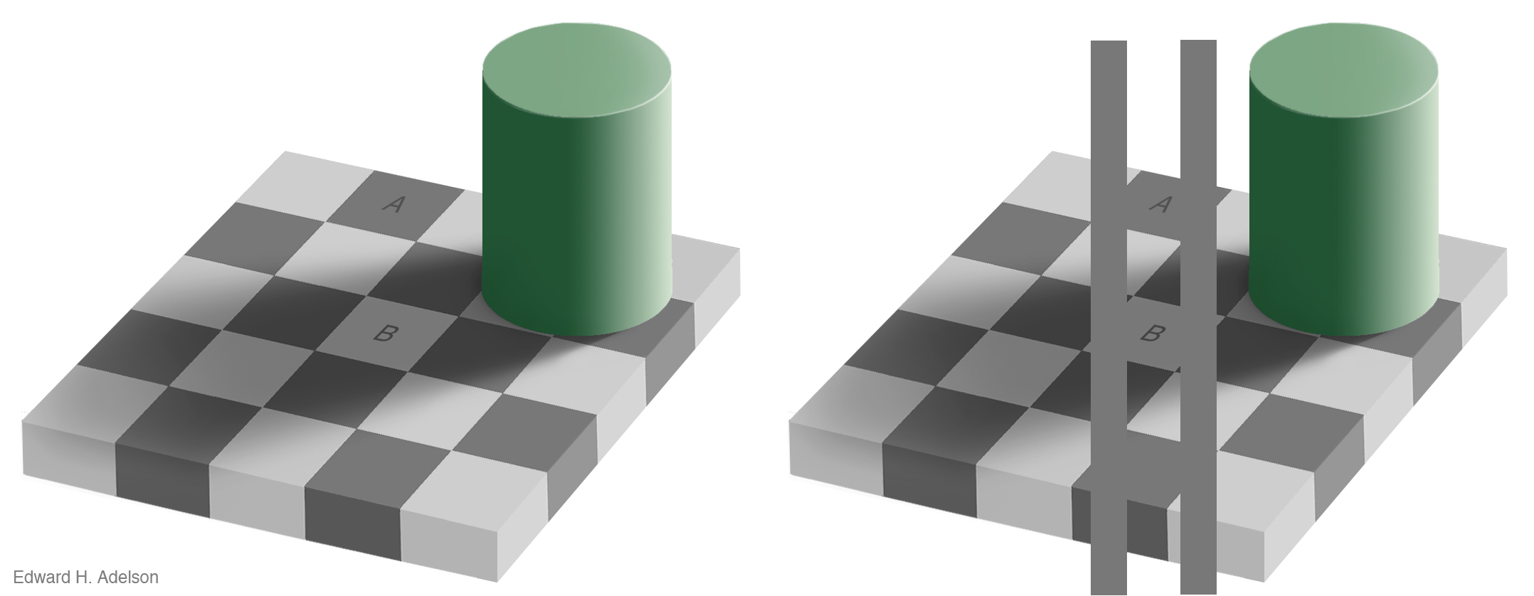 The checkershadow illusion (Edward H. Adelson).